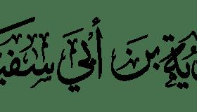 الداهية معاوية بن أبي سفيان