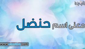 معنى اسم حنضل Handal في اللغة العربية وصفات حامل اسم حنظل