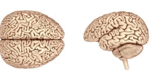 بهذه الطرق يمكنك زيادة قدرات العقل