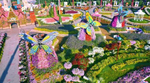الحديقة المعجزة فى دبي