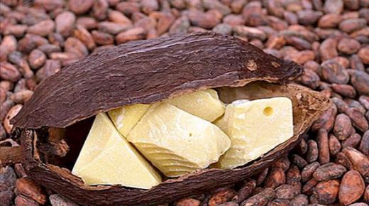 كيفية استخدام زبدة الكاكاو لشعرك ؟