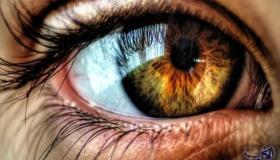 ماذا تعرف عن الذاكرة البصرية ؟ .. تعرف على أنواعها