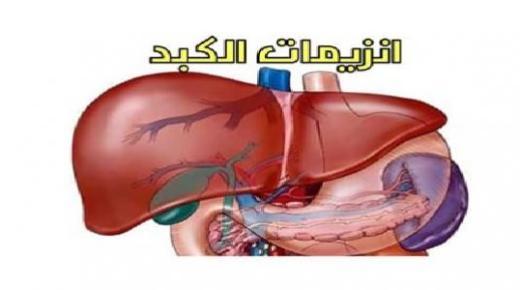أسباب ارتفاع إنزيمات الكبد