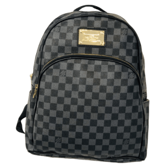 LV backpack in pakistan