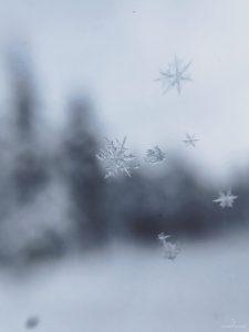 Copo de nieve. Viajar a Laponia en invierno