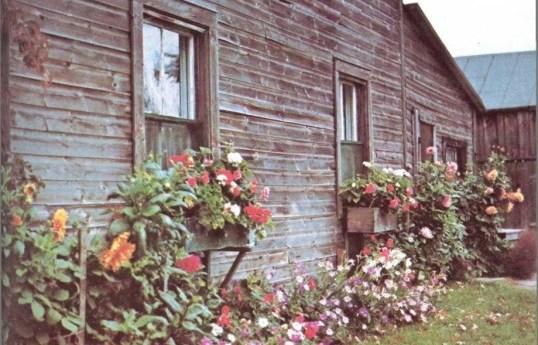 Jardines exteriores