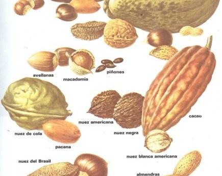 Golosinas obtenidas de las plantas