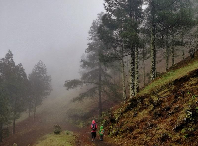Senderismo con niños en Gran Canaria: 10 rutas de iniciación