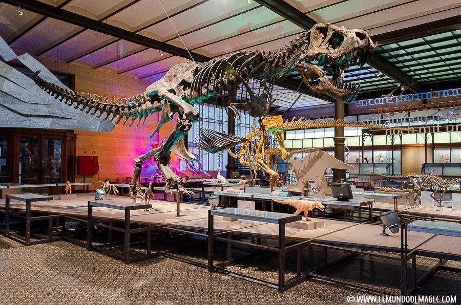 Que ver en bruselas en dos días - Tyranosaurus Rex