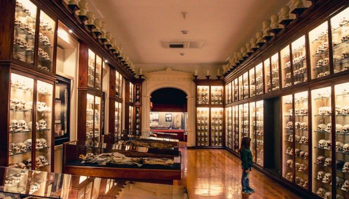 Museo Canario: El legado de los Canarii