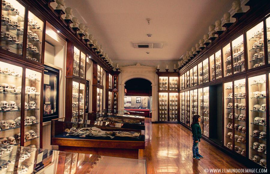 yacimientos arqueológicos de Gran Canaria - museo canario