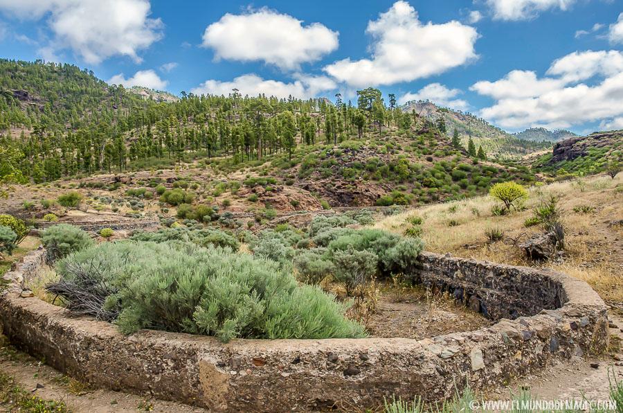 Senderismo en Gran Canaria - Acequias