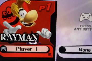 Fake Rayman in Smash