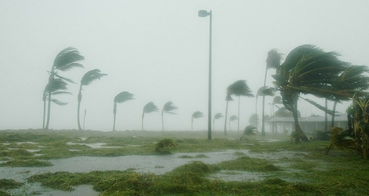 Verizon supports its customers following Hurricane Patricia