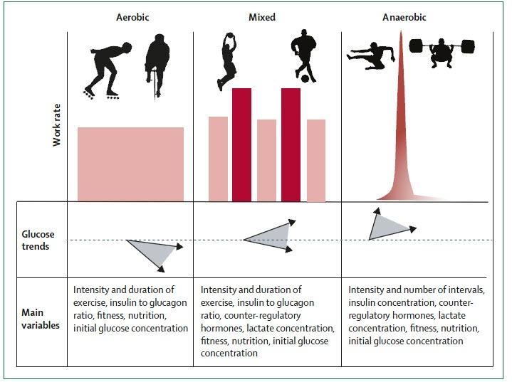 Diabetes tipo I y ejercicio