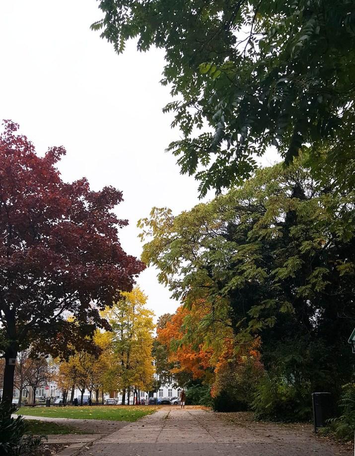 berlin fall