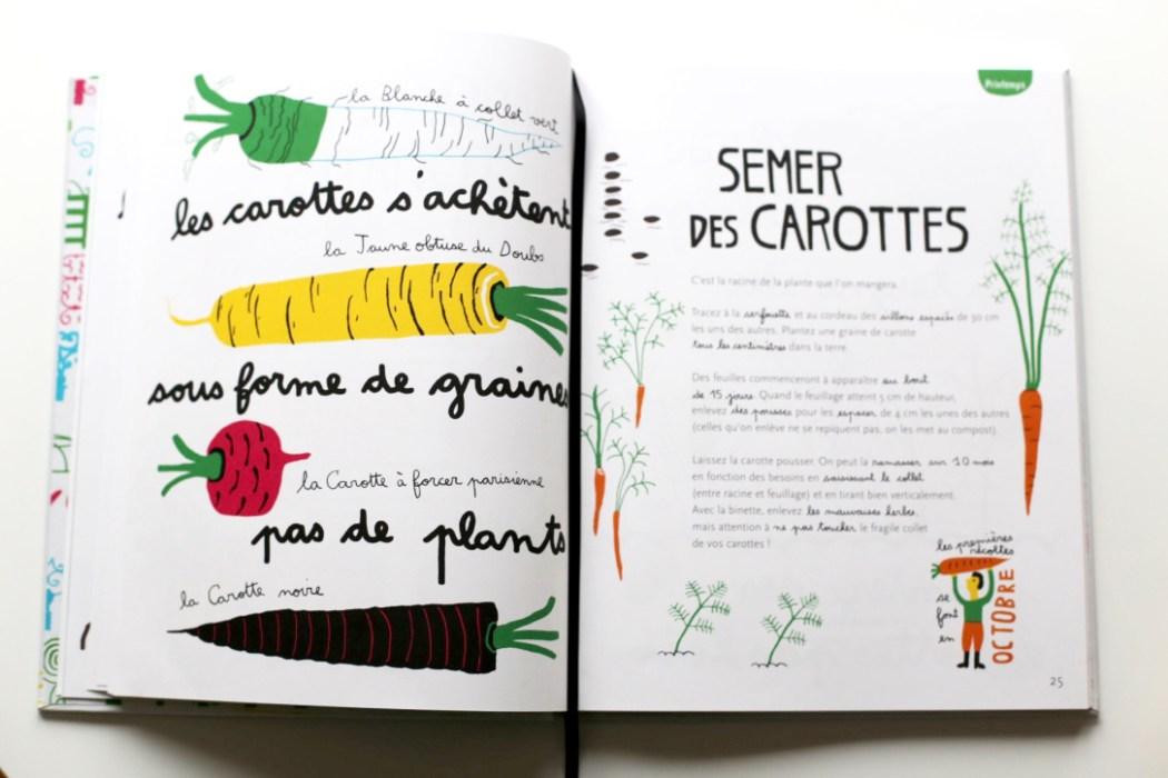 160417 semer des carottes 1 Jai descendu dans mon jardin...
