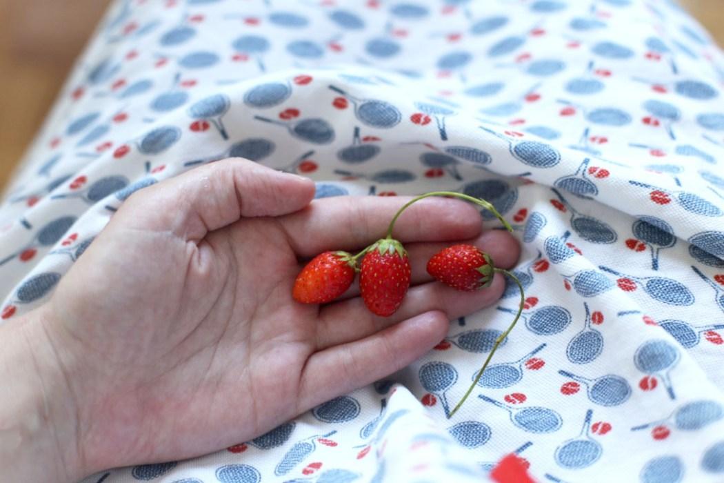 160724 fraise du jardin Concentré de vie #37