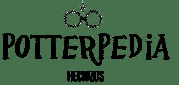 NUESTRO LIBRO DE HECHIZOS Y POCIONES DE 1º