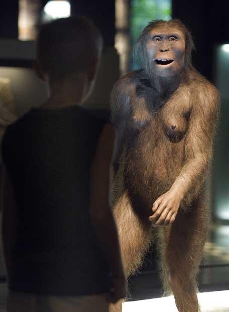 https://i2.wp.com/www.elpais.com/recorte/20070725elpepifut_1/LCO340/Ies/Reproducccion_hominido_i_Lucy_i.jpg