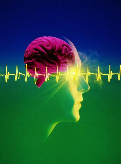 https://i2.wp.com/www.elpais.com/recorte/20081124elpepunet_1/LCO340/Ies/IBM_ha_anunciado_investigando_desarrollo_circuitos_electronicos_similares_cerebro.jpg