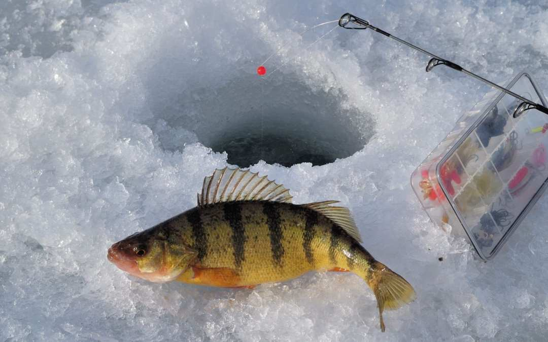 Ice Fishing Reports More Severe Types of Injuries