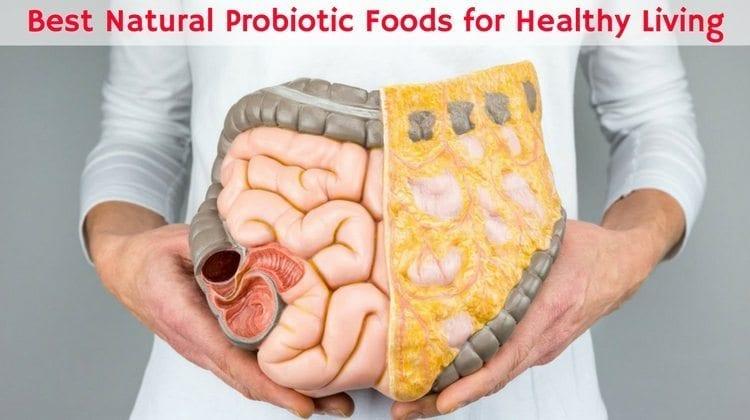 Healthy Living 10 Best Natural Probiotic Foods