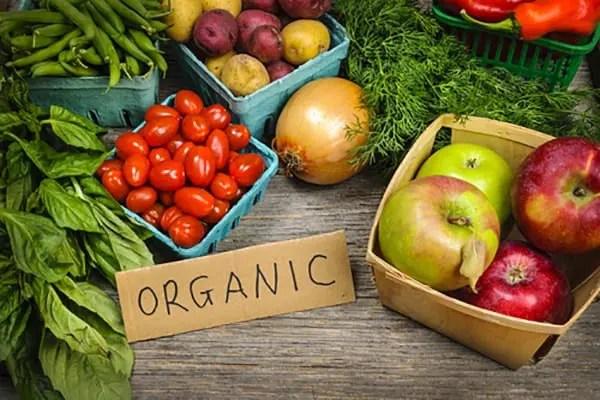 organic diet