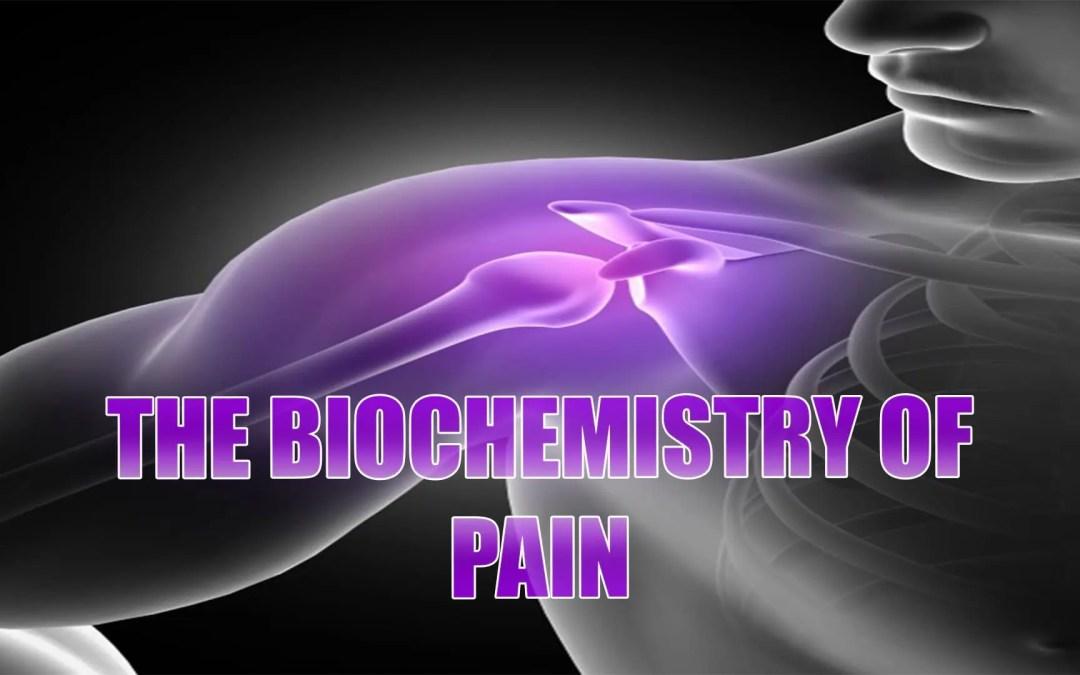 Biochemistry Of Pain