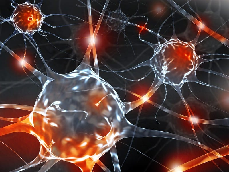 The Role of Neurogenic Inflammation