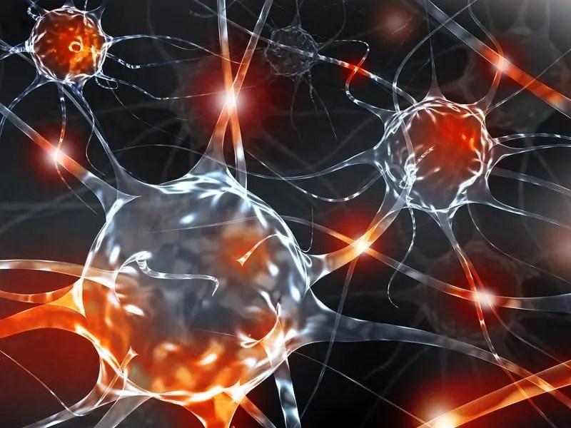 Il ruolo dell'infiammazione neurogena