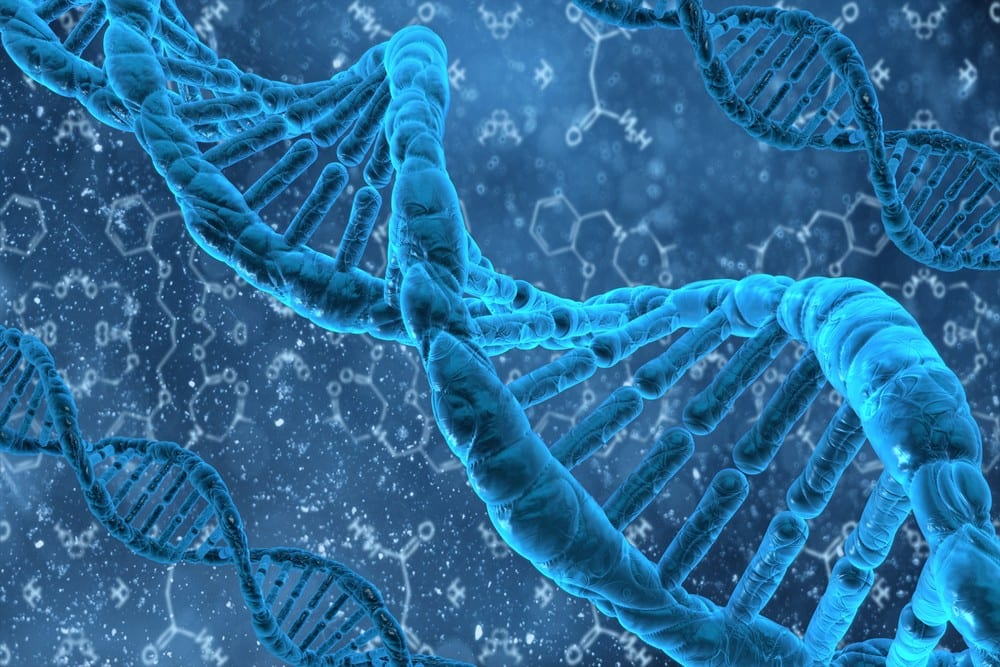 DNA Methylation Plasticity | El Paso, TX Chiropractor