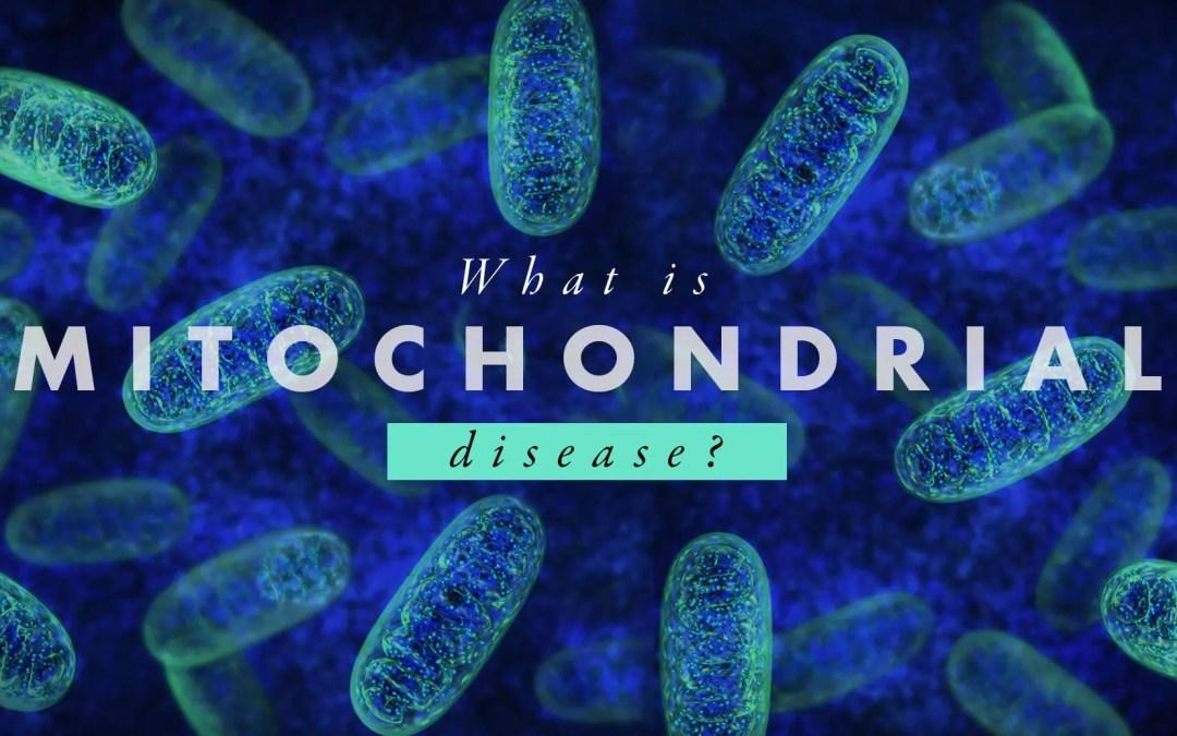 എന്താണ് മൈറ്റോകോൺഡ്രിയൽ രോഗം? | എൽ പാസോ, ടിഎക്സ് ചിറോപ്രാക്റ്റർ