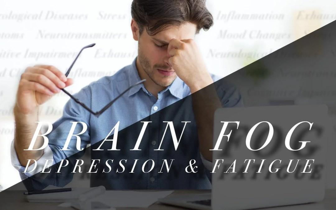 Functional Neurology: Brain Fog, Depression, and Fatigue