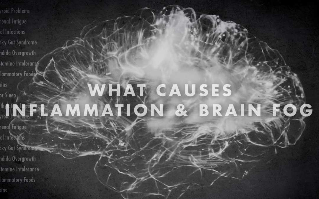 Functional Neurology: What Causes Inflammation and Brain Fog?