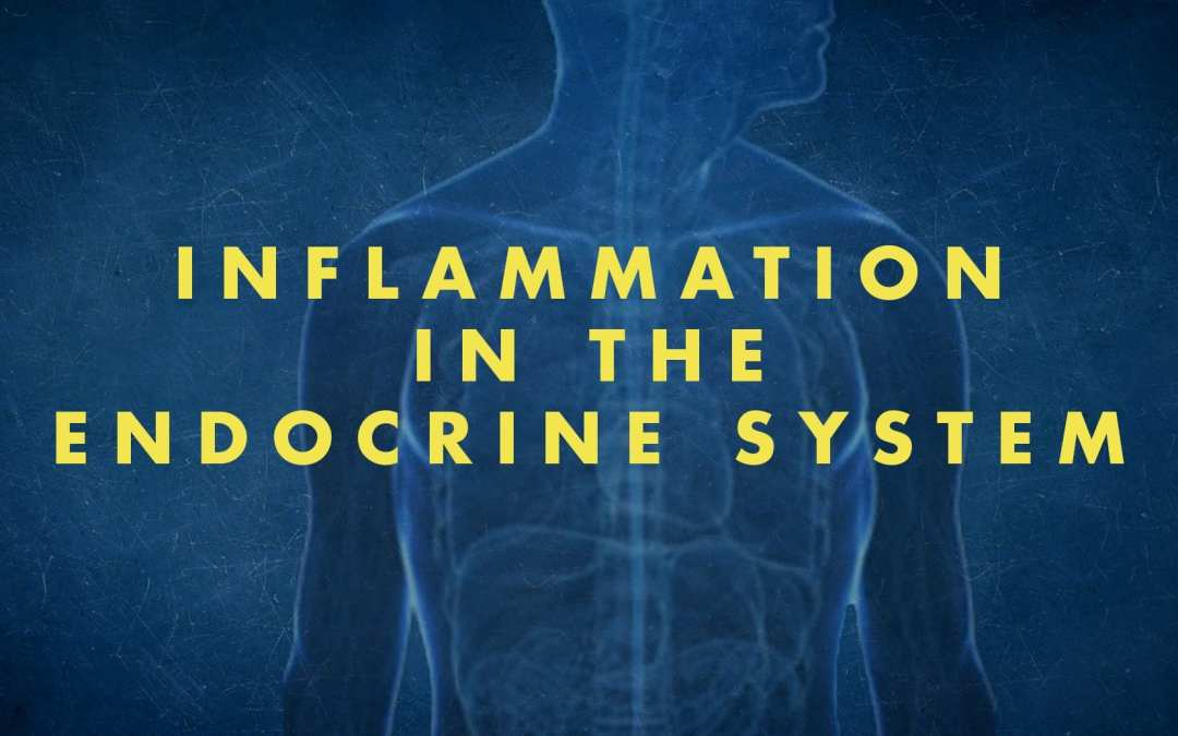 Functional Endocrinology: Inflammation and the Endocrine System