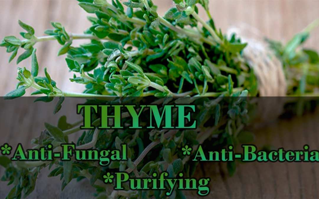 Thyme To Heal The Body