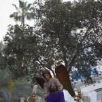 La Oración en el Huerto será la tercera Hermandad en pasar por Carrera Oficial el Jueves Santo