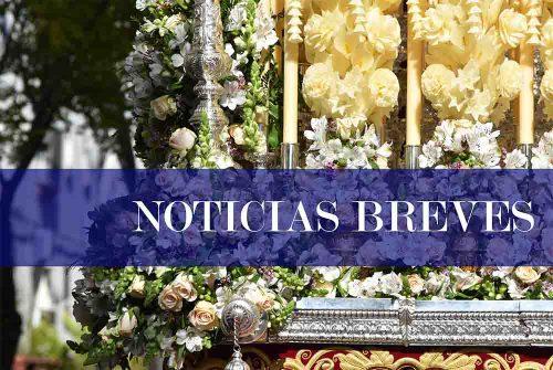 Breves y cofrades (XV)