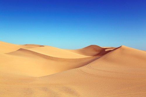 «El pregón del desierto» por Pablo Baena Rodríguez