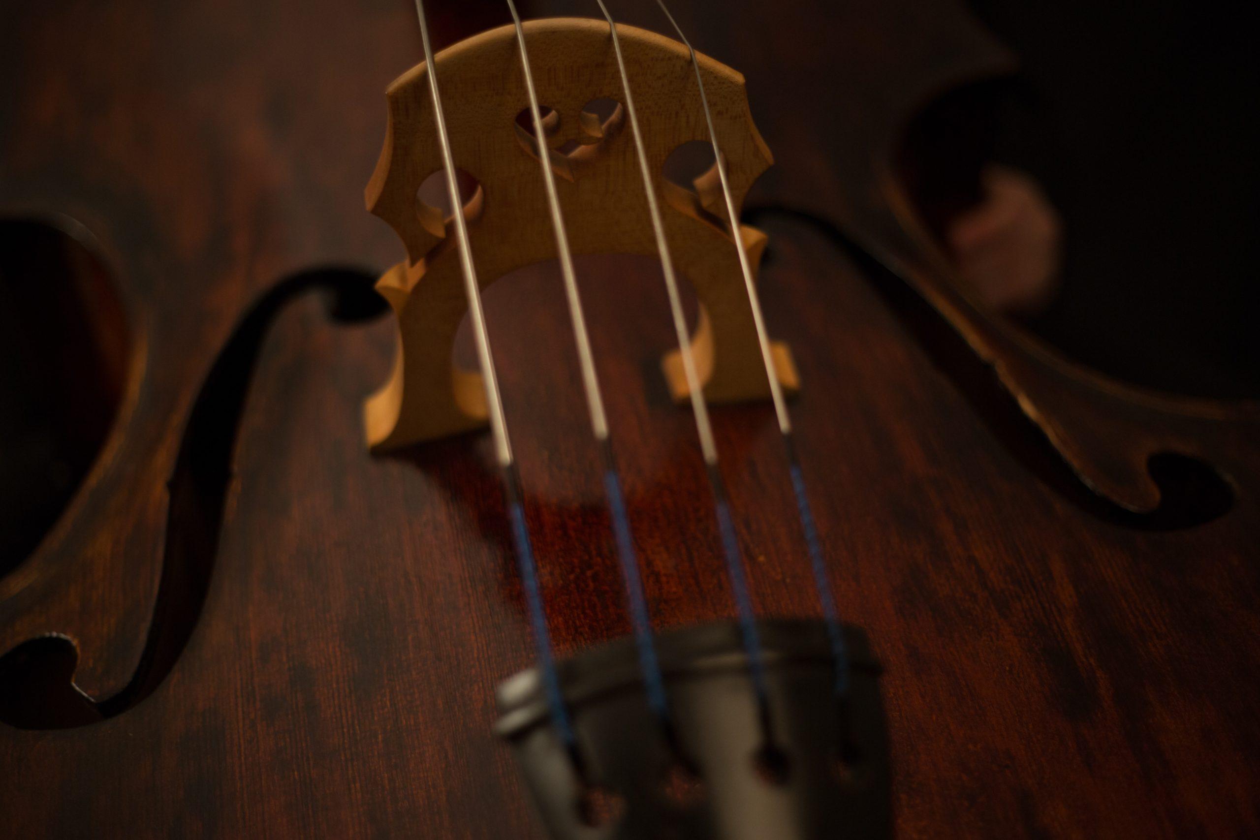La Joven Orquesta Campos Andaluces ofrecerá un interesante concierto homenaje a las víctimas del COVID-19