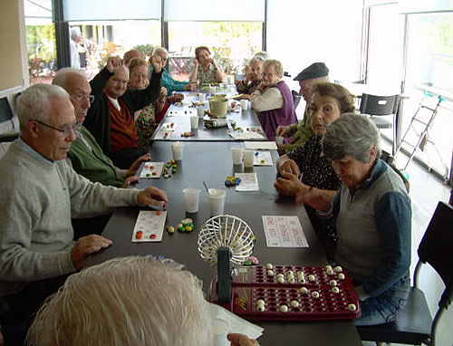 Bingo-jugar al bingo