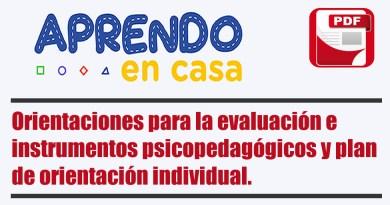 Orientaciones para la evaluación e instrumentos psicopedagógicos y plan de orientación individual.