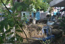 cementerio-enmontado3