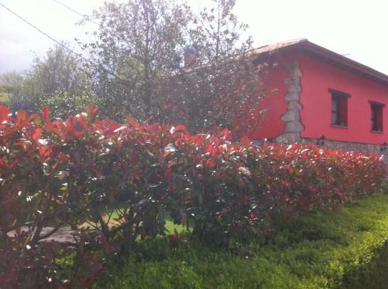 Casa rural en Ribadesella el Rincón del Sella