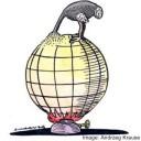 Ostrich-climate-change-mitigation