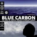 Blue carbon healthy oceans UNEP report