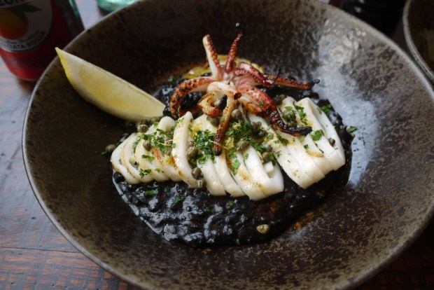 Squid with black ink rice, lemon and parsley salad