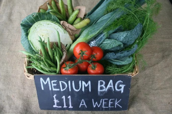Medium Veg Box