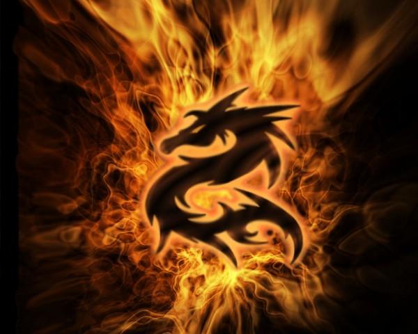 Dragones08